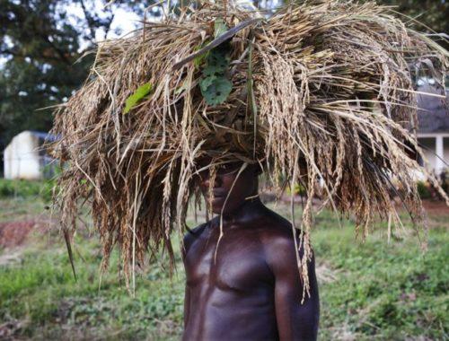 Особенности и достопримечательности Гвинея-Бисау