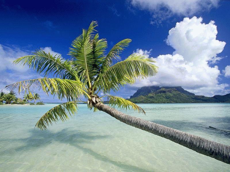 Osobennosti i dostoprimechatelnosti v Kiribati